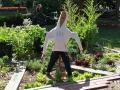 Arcadia PS Vegie garden 2012 (2) (1024x683)